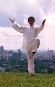 Challenging the 10 Tai Chi Principles - Barry McGinlay
